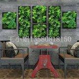 背景植物墙  背景墙 仿真植物墙