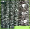 黑色农用大棚遮阳网 加密 防晒网 隔热网 遮阳网 6针遮荫网