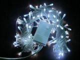 长期供应LED 10米100灯F5婚庆节假日灯串110V 220V