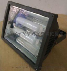 厂家直销量大优惠泛光无极灯低频无极灯泛光灯隧道灯
