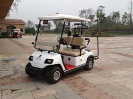 成都朗动LD-C2蓄电动高尔夫球车