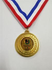 定制鋅合金電鍍浮雕烤漆獎牌
