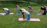 花都哪里瑜伽专业 花都梵谷瑜伽 舞韵瑜伽 瑜伽教培 瑜伽学校
