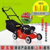 燃油手推式割草机, 绿化手推式草坪机, 汽油手推式草坪割草机