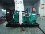 OEM厂家50kw康明斯柴油发电机组4BTA3.9-G2