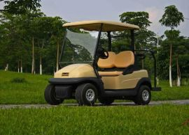 成都朗動LD-C2電動高爾夫球車