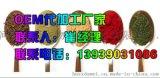 郑州加工虫草固体饮料厂家