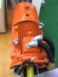Virya Y2VP系列变频调速电动机