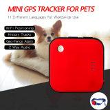 宠物防丢失定位器Pet GPS locator