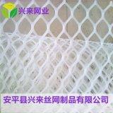 聚乙烯塑料网 养殖铺垫网 方孔塑料网