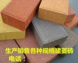 供應廠家直銷建菱透水磚200*100*60廣場磚