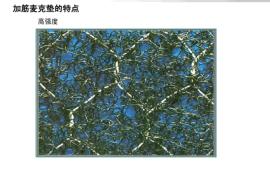 邊坡植被綠化加筋麥克墊、高強度加筋麥克墊