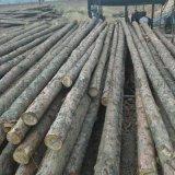 制造商家供应防腐油木杆