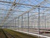玻璃溫室建造