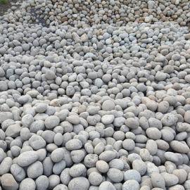 【灰色鹅卵石】_5-8公分天然灰色鹅卵石生产厂家!