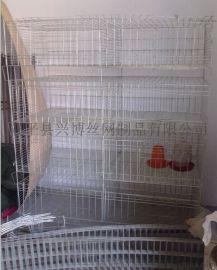廠家直銷鍍鋅鋼絲肉雞養殖籠,養雞籠子網片