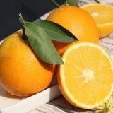 贛南臍橙,精選自江西贛州的臍橙