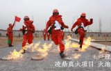 凌鼎LDZH-001火幕墙训练
