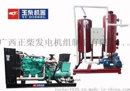 玉柴100KW沼气发电机组厂家供货