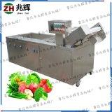 多功能洗菜机自动菠菜辣椒清洗机 上海青白菜全自动清洗机臭氧机