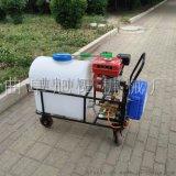 厂家直销旭阳汽油打药机105L推车式打药机