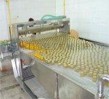 罐头生产线设备 黄桃罐头、桔子罐头加工设备-科信最专业!