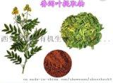 西安新维禾  番泻叶提取物 番泻叶甙20%
