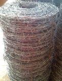 廠家供應優質鍍鋅刺繩