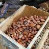 【红色天然鹅卵石】_3-5公分红色鹅卵石价格!