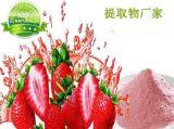 純天然100% 草莓粉 草莓果粉 速溶草莓果粉 濃縮粉