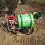 厂家直销四轮手推式园林打药机药箱式工地洒水机