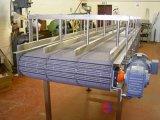 啤酒链板输送机,黄酒链板输送机,链板输送机