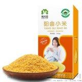 山西陽曲特產孕產婦雜糧黃小米粥兒童寶寶輔食粥米