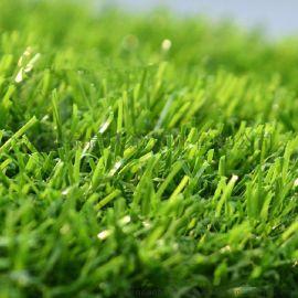 人造草坪 仿真草坪绿色地毯垫子阳台户外草坪 草坪