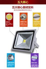 中山市好恒照明专业生产LED投光灯投射灯景观灯照树灯路灯防水投光灯景观灯厂家直销