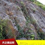 防护网厂家直销边坡绿化防护网 山体落石防护网 被动防护网