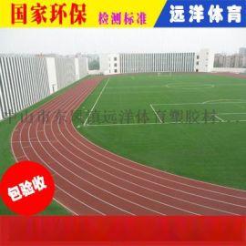 广西远洋复合型塑胶跑道