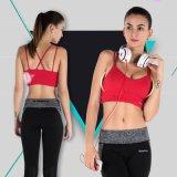 亚马逊爆款欧美时尚健身运动文胸细带防震无钢圈跑步内衣厂家批发