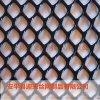 塑料網現貨,養殖塑料網,防護塑料網
