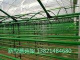 新型香菇架廠家直銷 價格美麗
