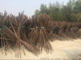 FD-172201厂家大量供应自然黑棕色竹竿,紫竹