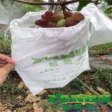 葡萄袋厂家直销无纺布防水防鸟透光透气葡萄专用套袋