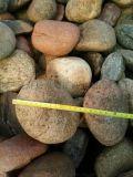 30-50mm天然五彩鹅卵石价格 河北天然鹅卵石厂家