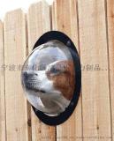 壓克力狗窗戶 亞克力半球天窗加工 寧波有機玻璃廠家 尺寸自選