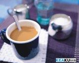 咖啡专用植脂末 飞马奶精