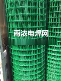 荷兰网 涂塑荷兰网 涂塑电焊网