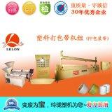 全能高效节能生产线 实力厂家PP包装带机塑料打包带机