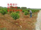 上饶县滴灌带安装方法说明 江西大田滴灌工程施工