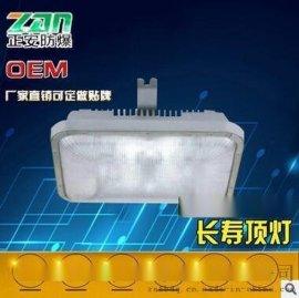 NFC9175長壽頂燈40W低頂燈直銷