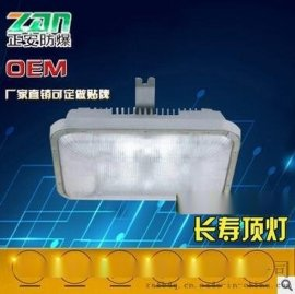 NFC9175长寿顶灯40W低顶灯直销